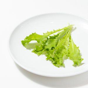 やさい村大地本店の野菜
